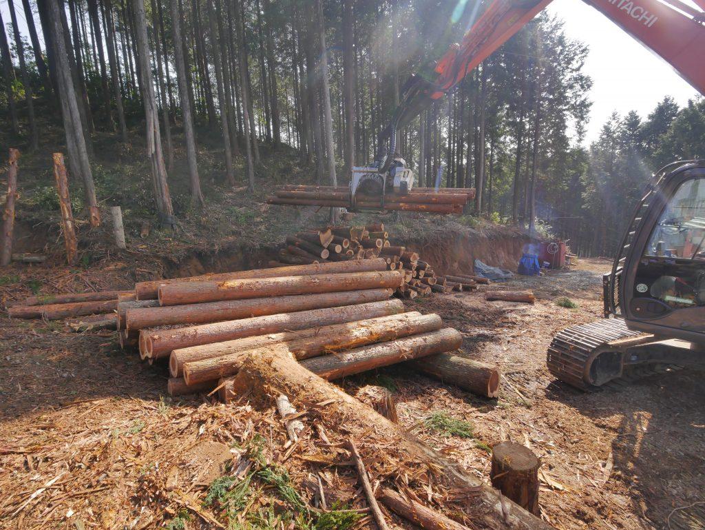 多良木の林業