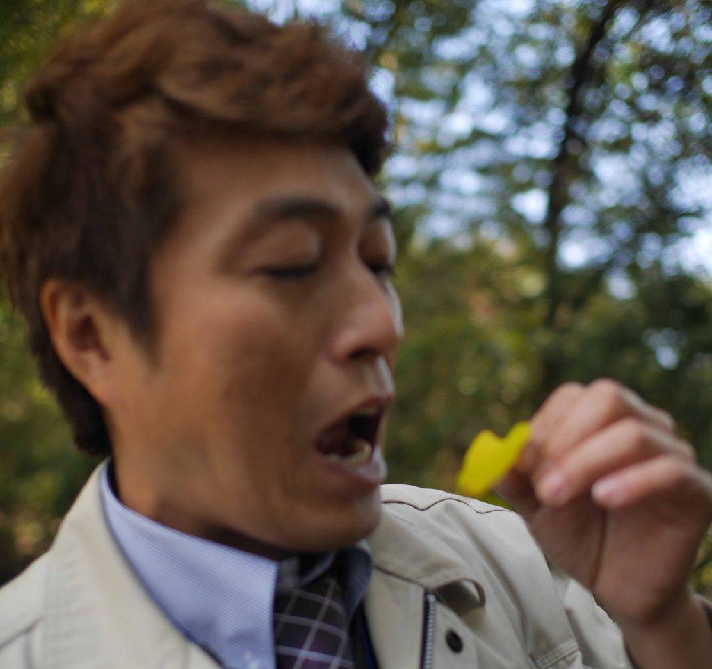 葉っぱを食べるのか