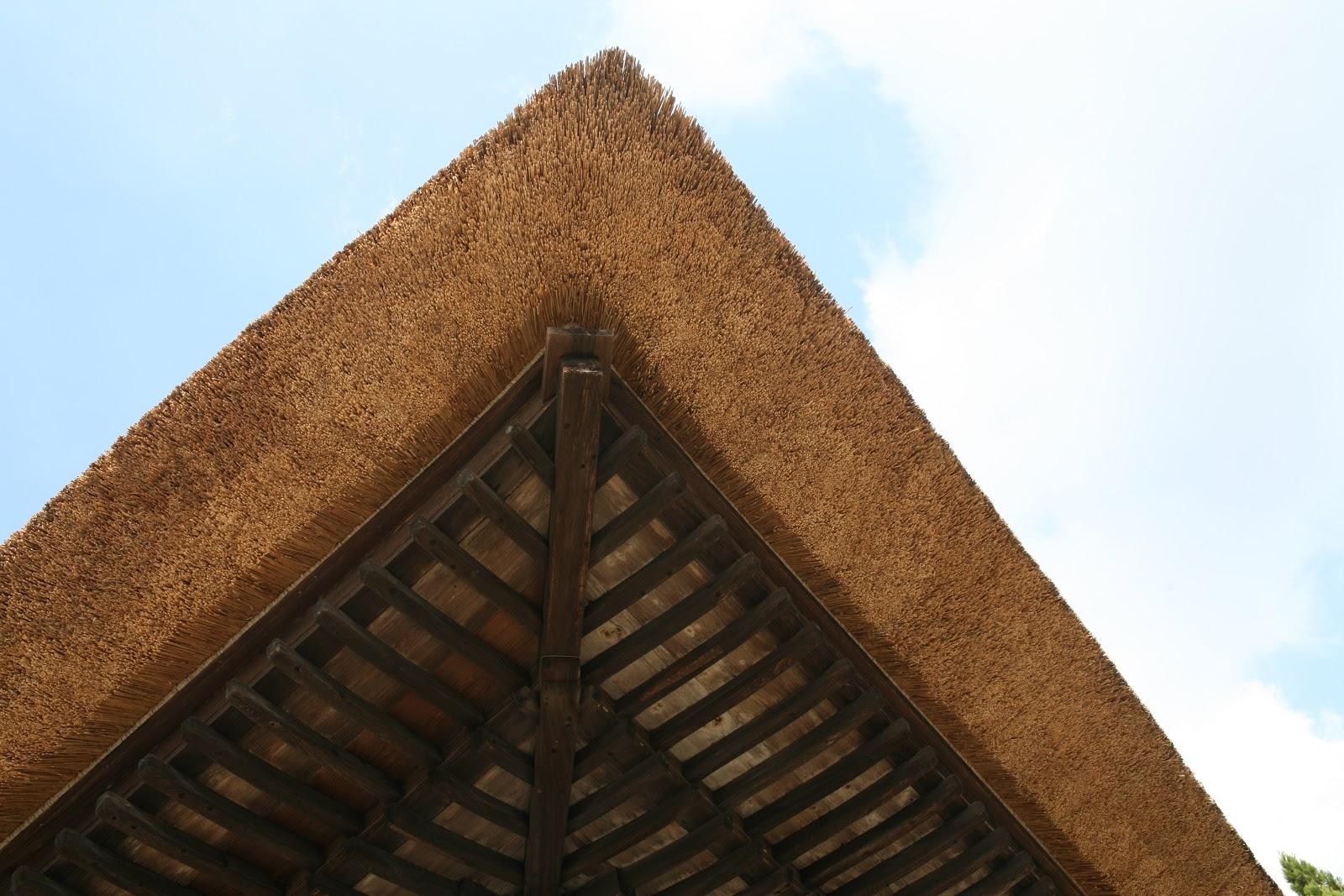 アップにされた茅葺屋根