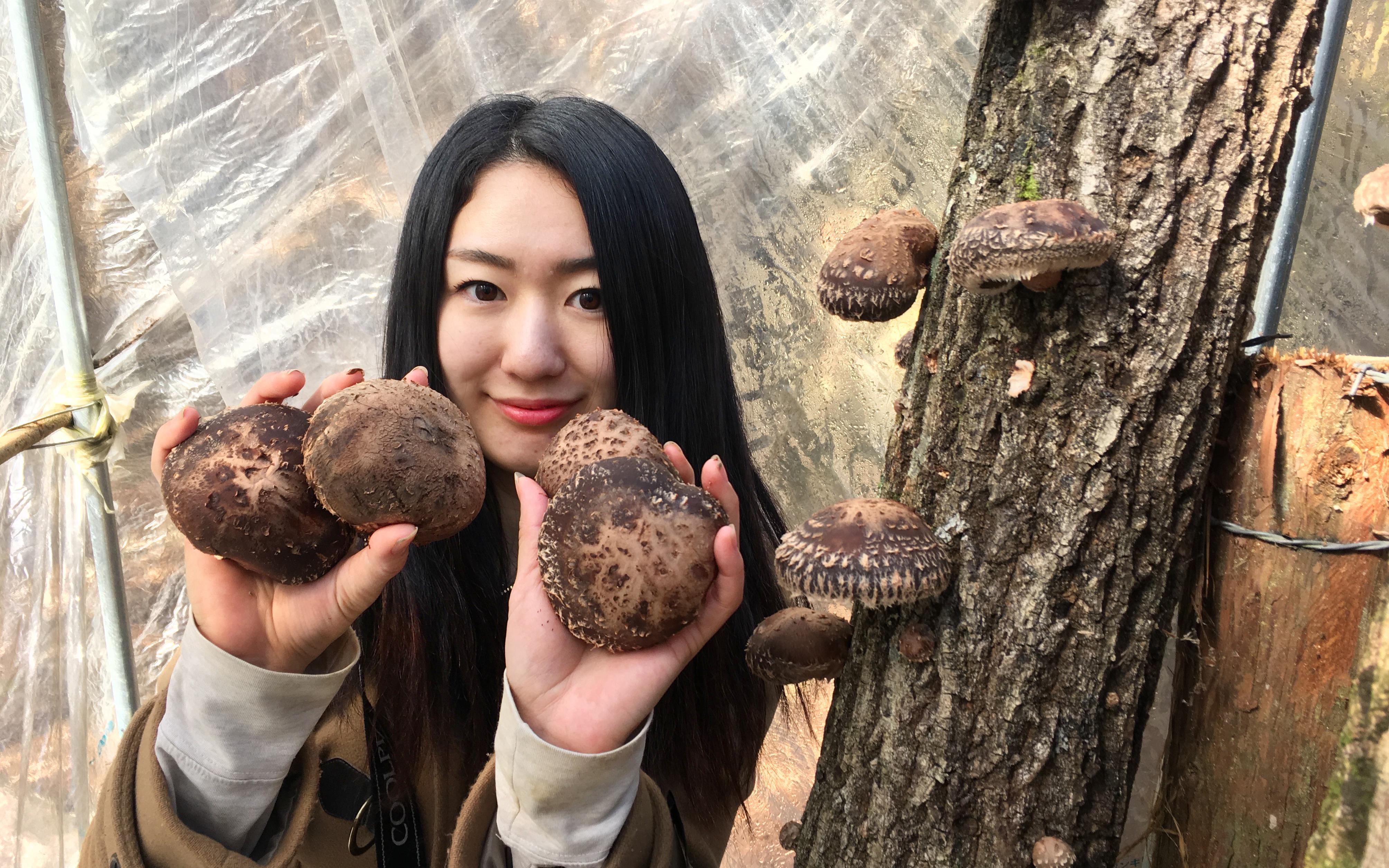 もう隠れ里なんて言わせない!多良木の魅力を全国に広めるプロジェクトを立ち上げます!